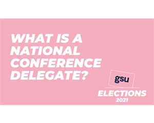What is a national conference delegate?